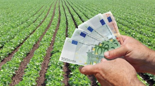 Foto: Plăţi în avans pentru fermierii