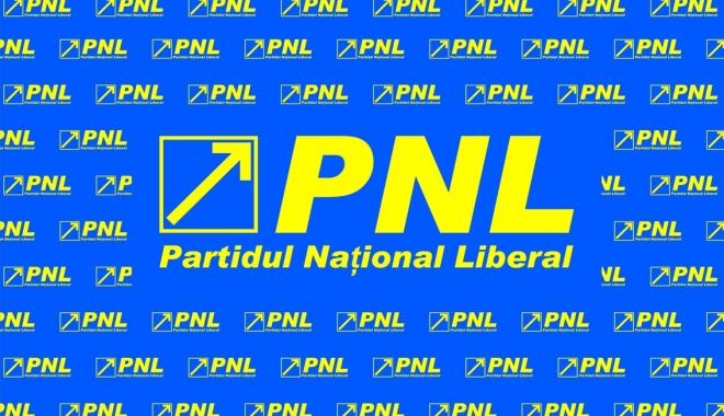 Foto: PNL a convocat Convenţia Naţională. Iată când va avea loc