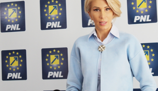 Foto: PNL a depus o moţiune simplă împotriva ministrului Energiei