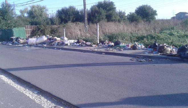 """Foto: Poliţia Locală face """"curăţenie"""". Amenzi în cartierul Palas"""