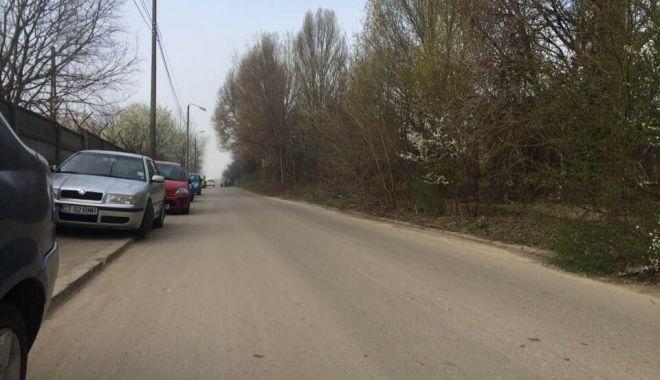 Foto: Poliţia Locală, ce face Poliţia Locală, ce face Primăria? Nu vede nimeni dezastrul din Tomis Nord?