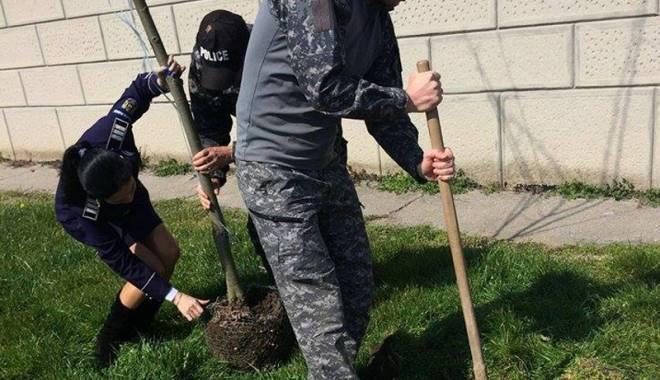 Foto: Poliţiştii constănţeni au plantat pomi de Ziua Internaţională a Pădurilor