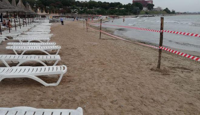 Foto: GALERIE FOTO. Poluare gravă la Marea Neară, în Mangalia. Plaja este închisă!