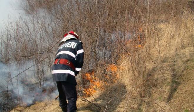Foto: Rezervaţia Delta Dunării, mistuită din nou de flăcări