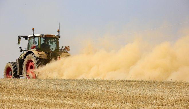 Fermierii au primit banii în conturi, pentru motorina consumată în 2021 - primaplata-1627660568.jpg