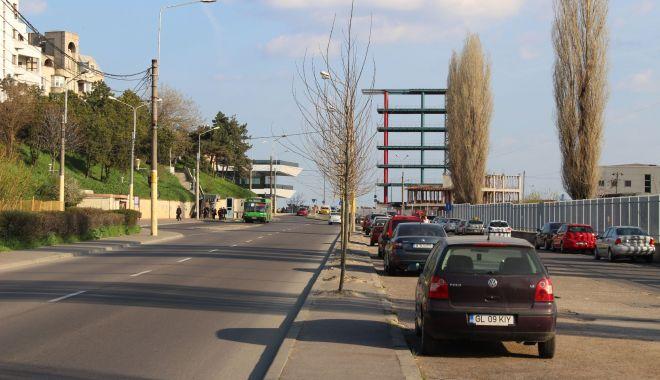 Foto: Primăria Constanţa a pus gând rău copacilor din zona Poarta 1! Proiectul de reabilitare a perimetrului, făcut pe genunchi!