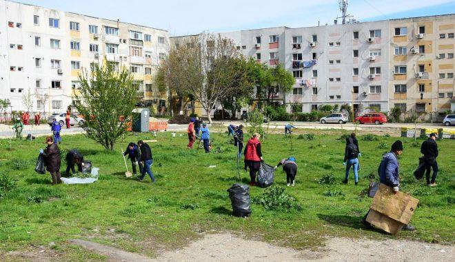 """Foto: Primăria Constanța a finalizat campania  """"Curăţăm Constanţa noastră"""". Care este rezultatul"""