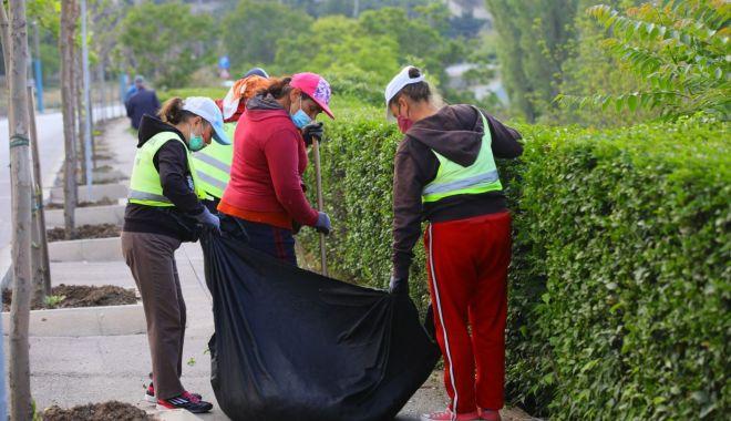 """Foto: Mesaj de la Primăria Constanța: """"Nu aruncați gunoaiele la întâmplare"""""""