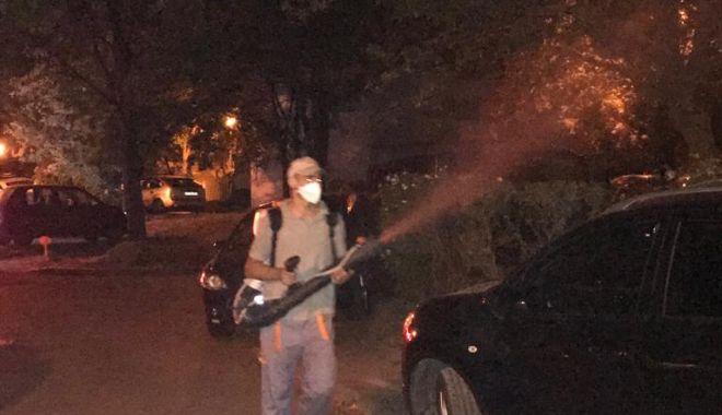 Primăria Constanța continuă dezinsecția în cartiere - primariacontinua-1564594339.jpg