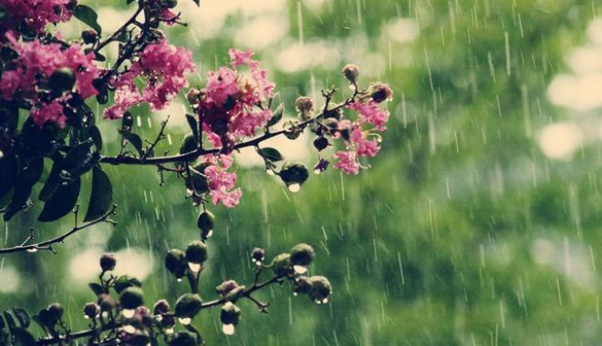 Foto: PROGNOZA METEO A PRIMĂVERII. Cum va fi vremea în martie, aprilie şi mai