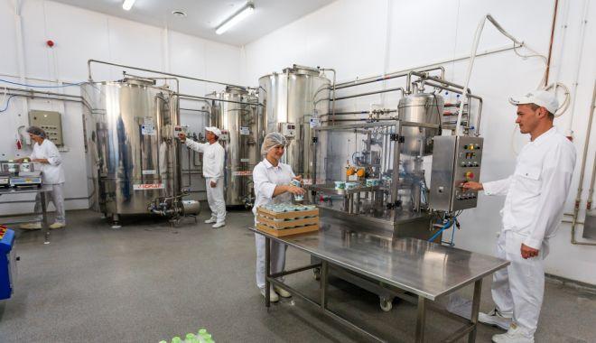 Producția de lapte e în creștere, iar importurile scad - productiadelapte-1573507740.jpg