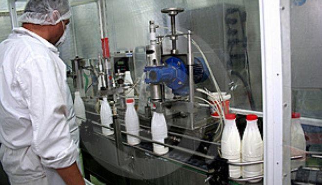 Foto: Producția și importul de lapte sunt în creștere