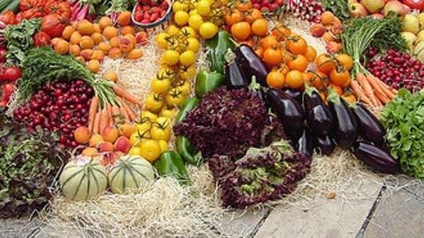 Foto: Sprijin alimentar din partea primăriei pentru nevoiaşii din Năvodari