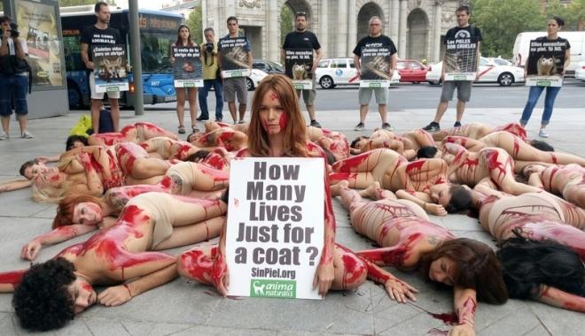 Foto: Sexy-protest împotriva hainelor de blană