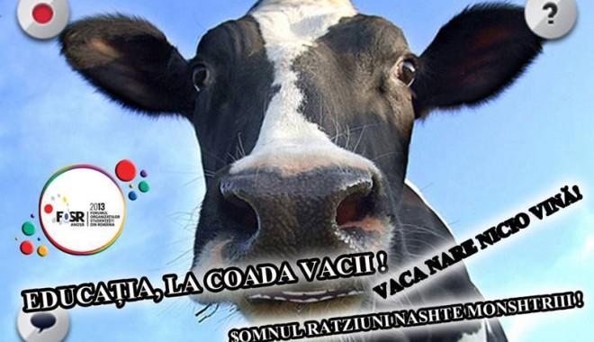 Studenții precizează: vaca nu a avut de suferit! - proteststudenti1375890489-1375980074.jpg