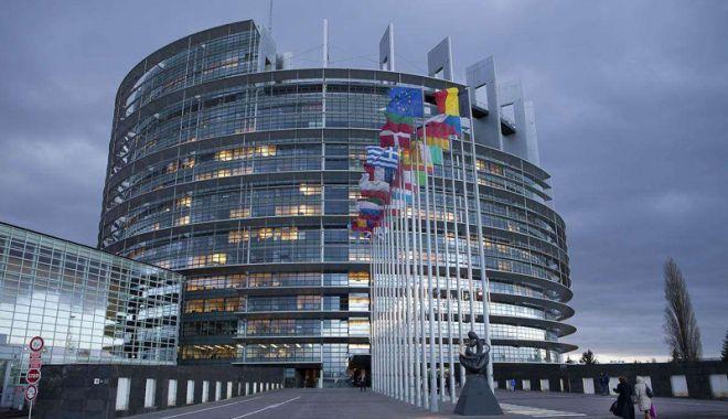 Foto: Europarlamentarii PSD, la raport