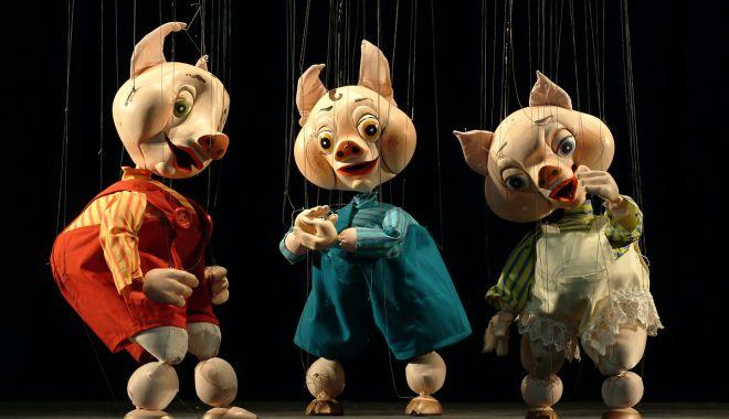 """Copiii, invitați la specatcol să-i admire pe """"Cei trei purceluşi"""" - purcelusi-1549921367.jpg"""