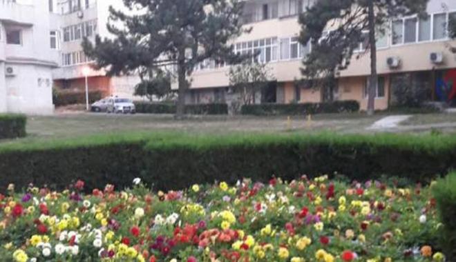 Foto: F�r� blocuri turn pe spa�iul verde din Tomis II. PUZ-ul a fost anulat definitiv