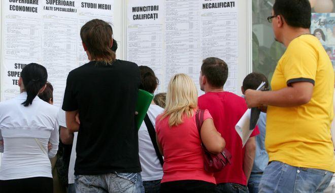 Foto: Rata șomajului  este în scădere