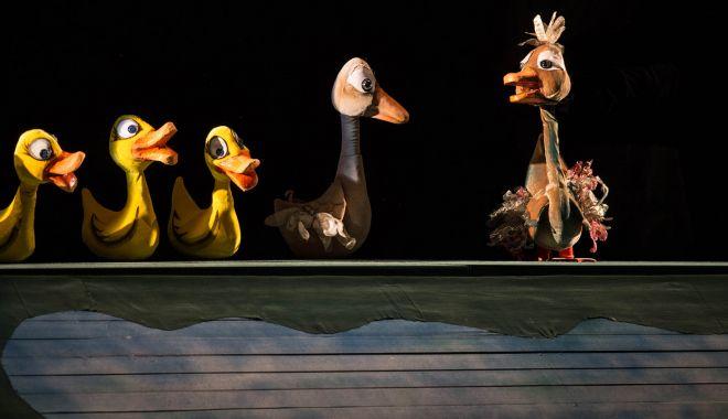 """Invitaţie la teatru! """"Răţuşca cea urâtă"""" se transformă într-o superbă lebădă - ratusca-1617536737.jpg"""