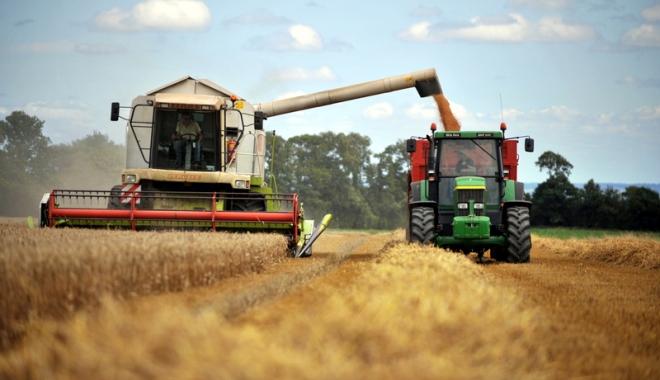 Foto: Recolta de cereale e mai mică decât în 2016, iar preţurile îi nemulţumesc pe fermieri