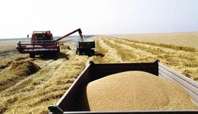 Foto: Reguli mai stricte pe piaţa cerealelor
