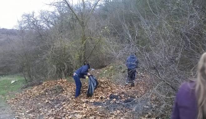 Foto: Rezervaţia Fântâniţa, ecologizată de liceenii din Murfatlar