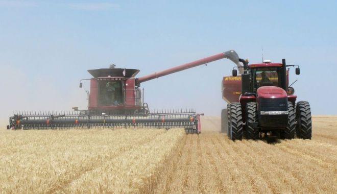România a ocupat locul şase în UE la producţia de grâu - romaniaaocupat-1618750324.jpg