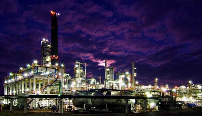 Foto: Rompetrol susţine Ora pământului
