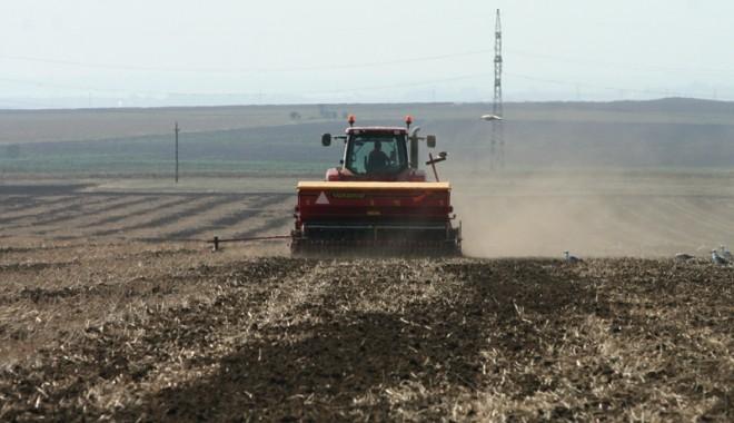 Foto: Drumuri agricole de patru milioane de lei la Castelu