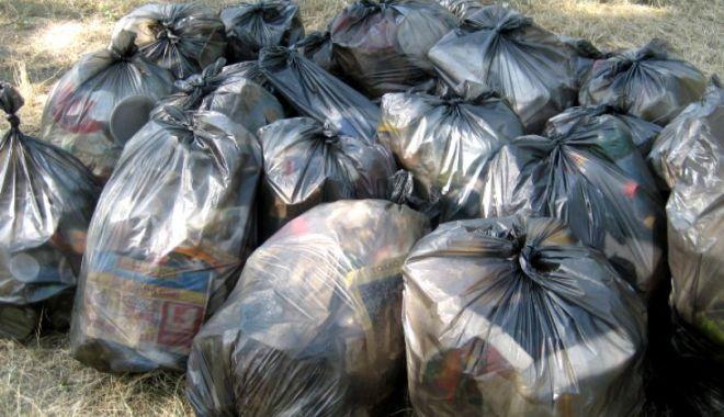 Foto: O femeie a primit prin poștă gunoiul aruncat la marginea pădurii