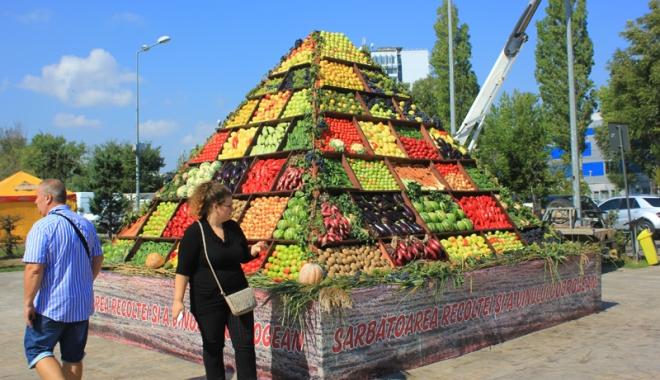 """Foto: Consiliul Judeţean, pregătiri pentru """"Sărbătoarea Recoltei şi a Vinului Dobrogean"""""""
