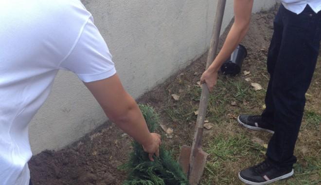 """Foto: Şcoala """"Gh. Ţiţeica"""" a dat """"check-in"""" la plantat răsaduri"""