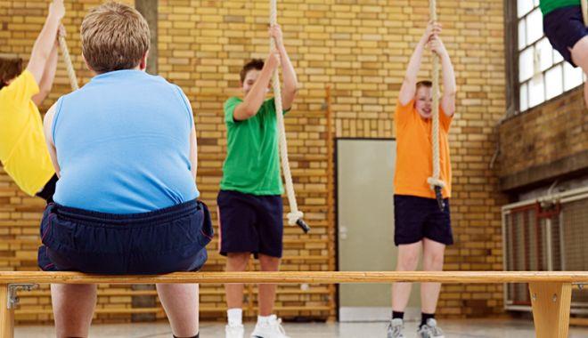 Şcolile sedentarismului! Fără săli de sport, dar cu lacătul pe porţi - scolile-1536672763.jpg