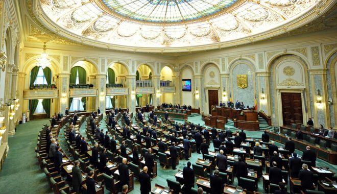 Foto: Senatorii au aprobat tacit declararea  Zilei Independenţei naţionale pe 10 mai