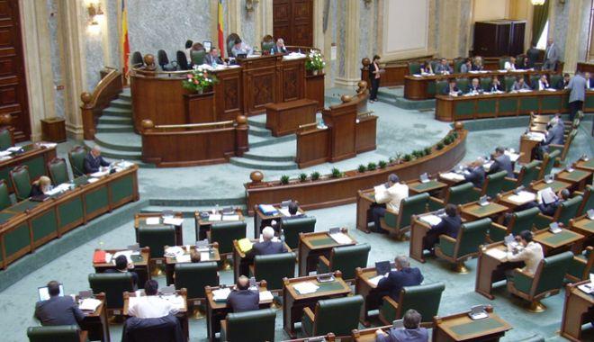 Foto: Senat: Propunere legislativă privind acordarea  unui concediu pentru divorț