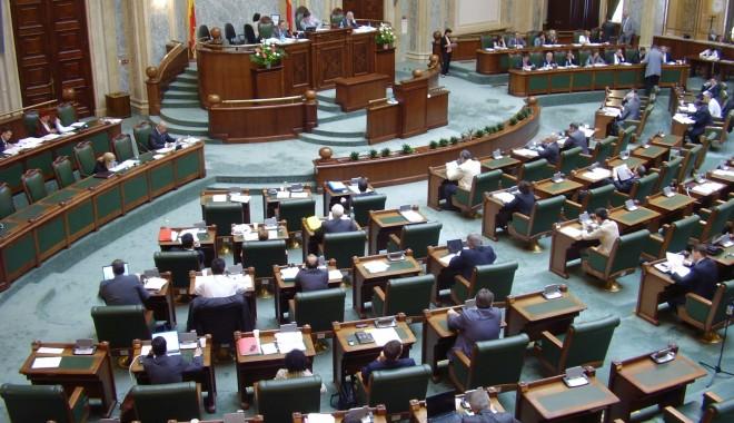 Foto: Senatorii susţin ca voluntariatul va fi considerat experienţă profesională