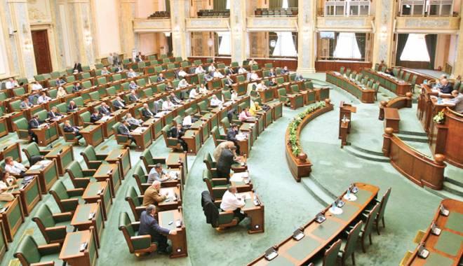 Foto: Senatul dă undă verde constituirii unui partid cu trei membri
