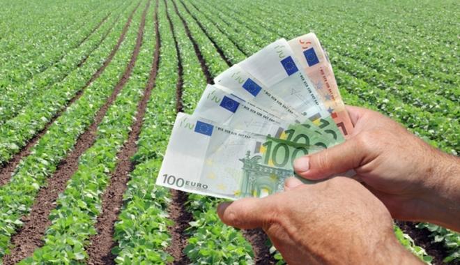 Foto: Se plătesc ajutoarele în sectorul vegetal