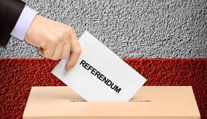 Foto: Se poate organiza referendum în aceeași zi cu alegerile? Ce spun cei de la ALDE
