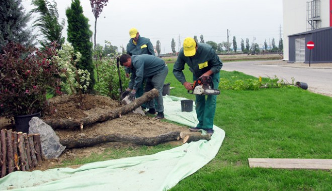 Foto: Se reiau lucrările de reabilitare  a spaţiilor verzi la Medgidia