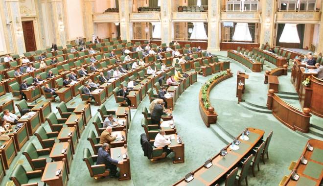 Foto: Sesiune extraordinară la Senat, pentru legea privind reducerea CAS