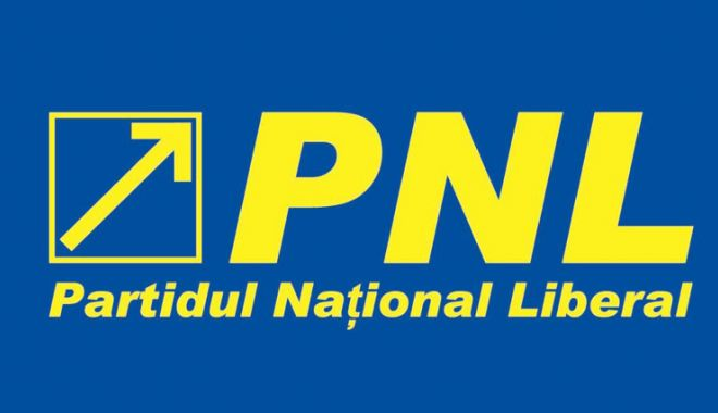 Foto: Tinerii din PNL Constanța: Dragnea vrea ca noua generație să fie dependentă de pomeni electorale