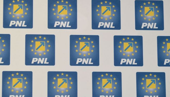 Lista candidaţilor PNL la europarlamentare, validată de BPN - siglapnl-1552572040.jpg