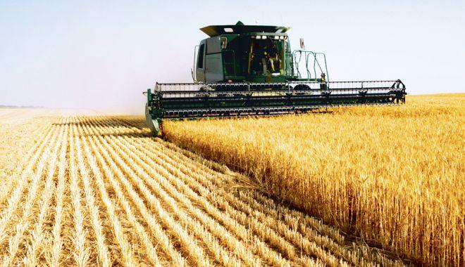 Foto: Societățile agricole se transformă în societăți comerciale