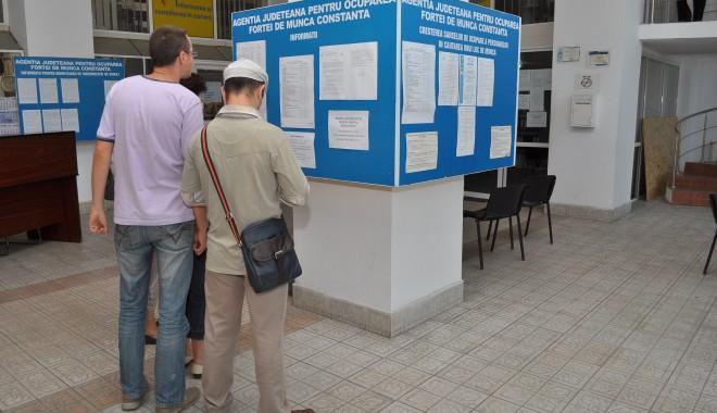 Foto: INS. Cât a scăzut rata şomajului