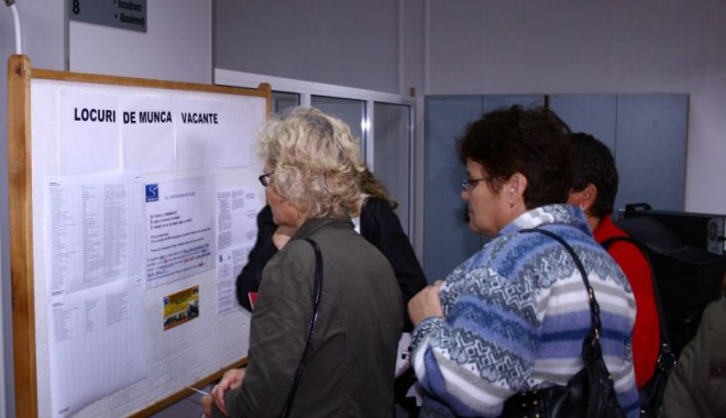 Foto: Şomerii din Medgidia, consiliaţi şi instruiţi pentru deschiderea unei afaceri