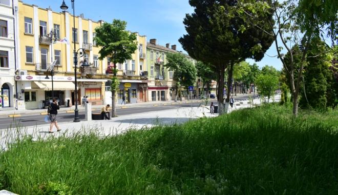 Foto: Vrei să construieşti o casă, un bloc sau o şcoală  în Constanţa? Vei fi obligat să plantezi iarbă şi copaci