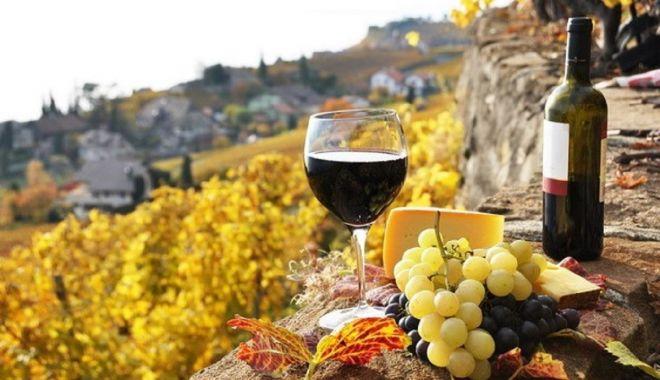 Sprijin european pentru producătorii de vin - sprijineuropeanpentruproducatori-1606152295.jpg