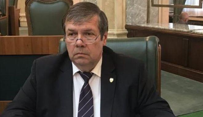 Foto: Senatorul Ștefan Mihu, intervenții în Senat pentru prelungirea vacanței de vară